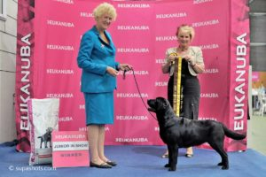 Best Junior